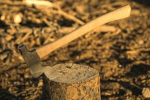 stump removal Adelaide